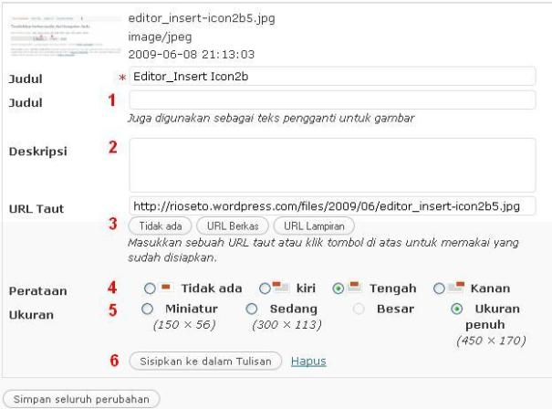 Editor_Insert Icon3b